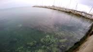 Meeräsche