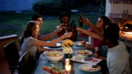 Multi Ethnic Friends Toast Together at a Summer BBQ