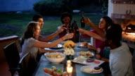 Vrienden van de multi-etnische Toast samen bij een zomer-BBQ
