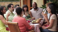 MS Multi Ethnic Group of Adults Eating Together Outside, Toasting / Richmond, Virginia, USA