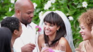 CU Multi Ethnic Group of Adults Toasting Newlywed Married Couple / Richmond, Virginia, USA