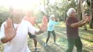 Multi-ethnic group of seniors doing tai chi in park