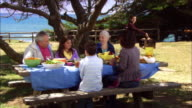 MS, Multi-generational family having picnic in Leffingwell Park, Cambria, California, USA