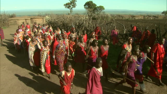 Multiple - Two groups of Maasai walk in step past one another during a procession in Africa / Kenya