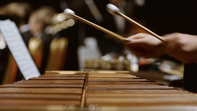 De spelen xylofoon muzikant in het orkest