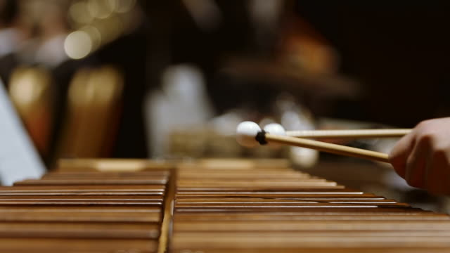 Musician playing xylophone in orchestra