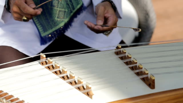 Musicians are playing the wood dulcimer.