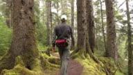 Naikoon Provincial Park Fichtenwald Trail Wanderer Mann Haida Gwaii British Columbia Kanada