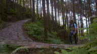 Nakasendo Road (slow motion)