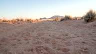 LA DS Namibian Landscape
