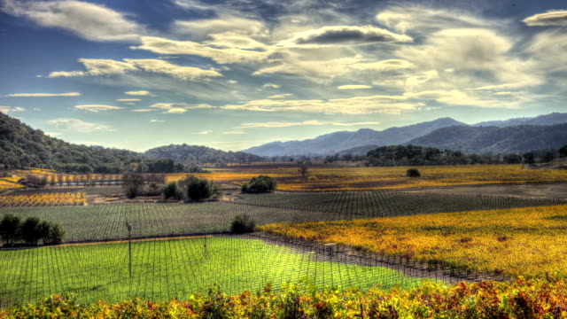 Napa Valley Fall Epic Timelapse HDR