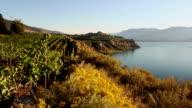 Naramata Bench Penticton Okanagan Valley Vineyard