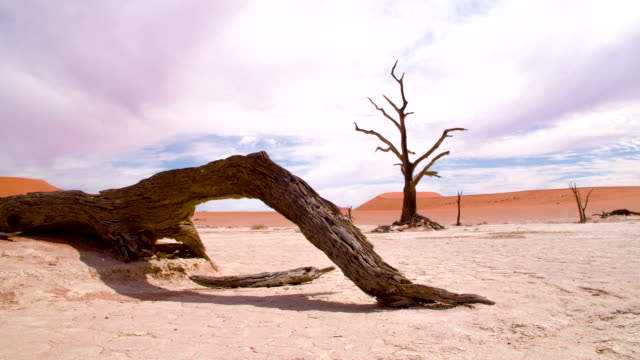 DS WS Natural Disaster In The Dead Vlei