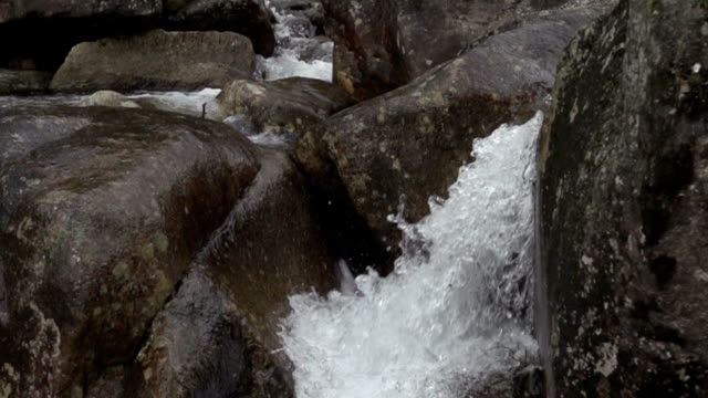 Natural Fresh Spring Water In Slow Motion