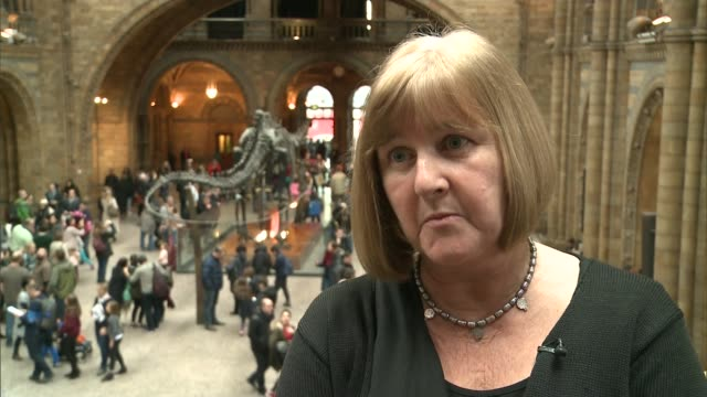 Natural History Museum dinosaur 'Dippy' to tour country Lorraine Cornish interview SOT
