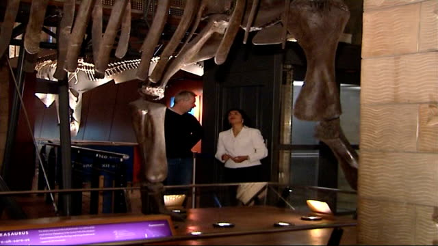 Natural History Museum fossil identified as new type of dinosaur Natural History Museum INT Mike Taylor set up next to dinosaur skeleton and...