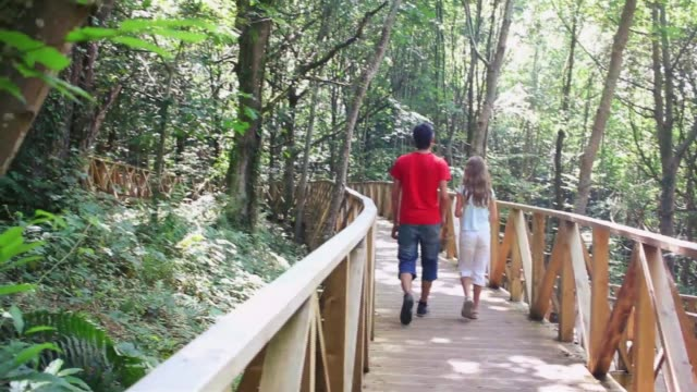 Nature. Father and daughter walking on a wooden path adapted in the forest.