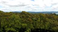 Nature of Coromandel, NZ