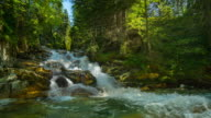 Nature-scape Cinemagraphs - 4K cascade in mountain forest