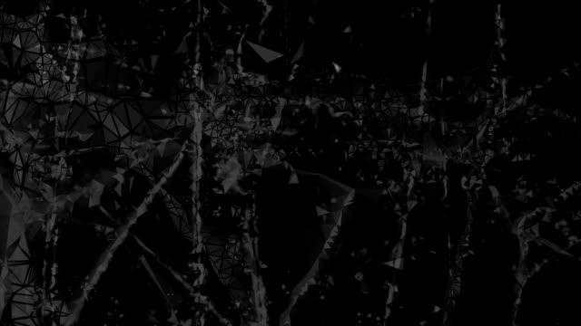 POLYMORPHIC SENSE : near the limit, black-white (LOOP)
