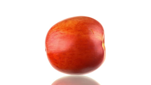 HD LOOP: Nectarine