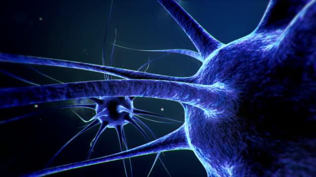 Neurons Gehirn