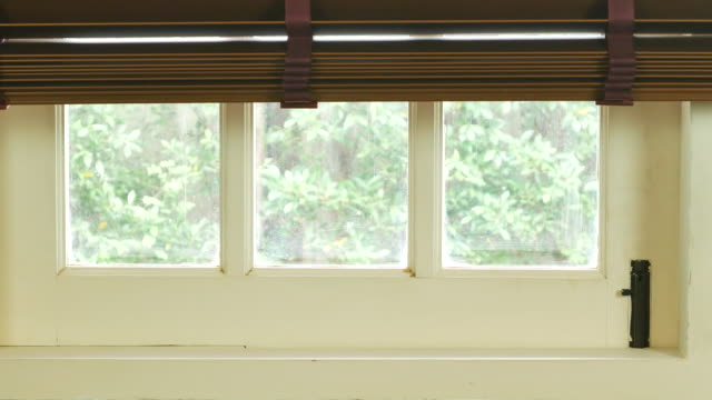New day,opening window blind