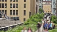 New York Highline Pan