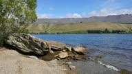 New Zealand Lake Dunstan with rock