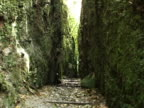 MS, ZO, Nicaragua, Volcan Mombacho Natural Park, Narrow path between two foliage covered cliffs