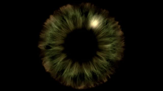 nice iris eye opening slow