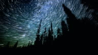 North Star over Forest on Mt. Hood Abstract Star Trails Night Time Lapse