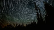 North Star Over the Forest Star Trails Night Time Lapse