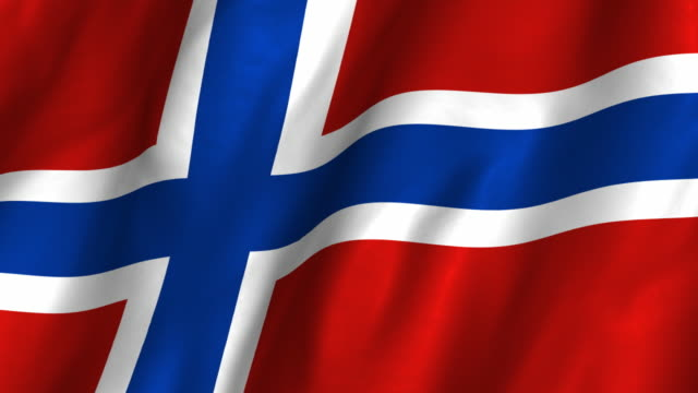 Image result for norway flag