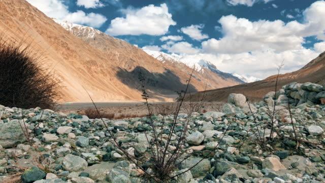 Nubra valley the desert, leh ladakh india