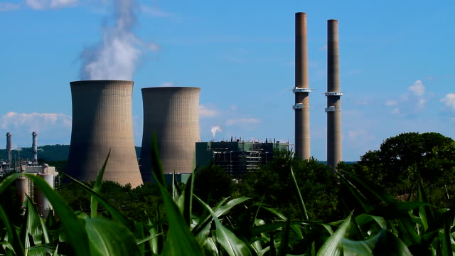 Nuclear Cooling Towers  In Corn Field
