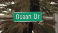 Ocean Drive in Miami mit Palmen