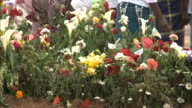October 23 2010 MONTAGE Colorful flowers on top of a grave with Mozambicans gathered around / Mozambique