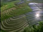 AERIAL of green rice paddies + countryside near Tabanan / Bali / Indonesia