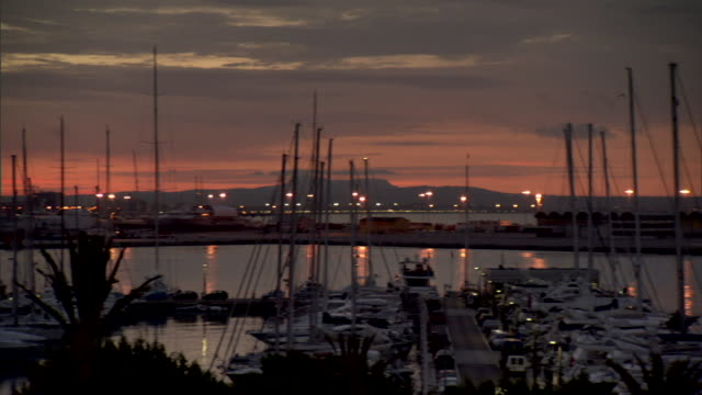 of Large harbor w/ palm treetops in FG and many docked sailboats at sunrise w/ lavender orange sky in BG