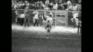 EXT of the Houston Astrodome on the day of the local rodeo / cowboys attempt to ride bulls as crowd watches / cowboys on bucking broncos / tape goes...
