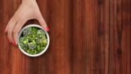 Offering frozen broccoli