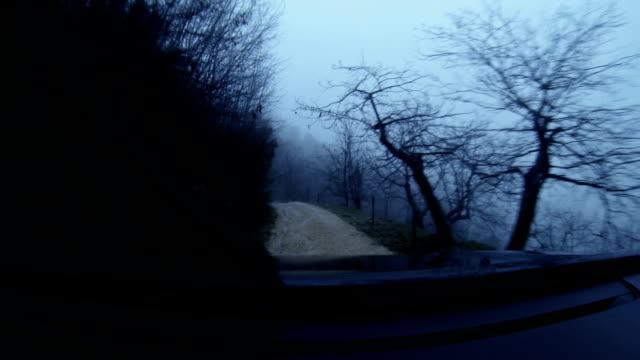 Geländewagen Auto-Onboard-Kamera bei Nacht
