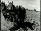 Ohio farm w/ house barn on open pasture cows grazing Three horses pulling plow farmer walking behind MS Plow tilling turning soil Farmer son...