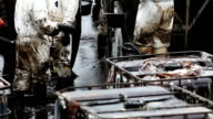 Oil spill on Gulf