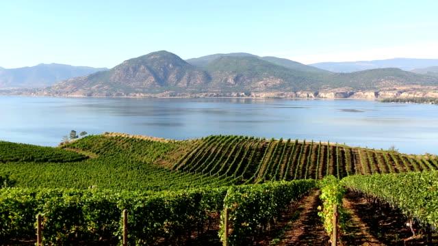 okanagan valley naramata winery vineyard