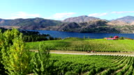 okanagan valley organic vineyard winery