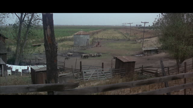 1967 WS HA Old farm buildings, pigs in wallow and two handlers with bloodhounds in corral