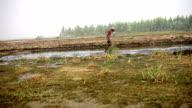 Old farmer walking in the field
