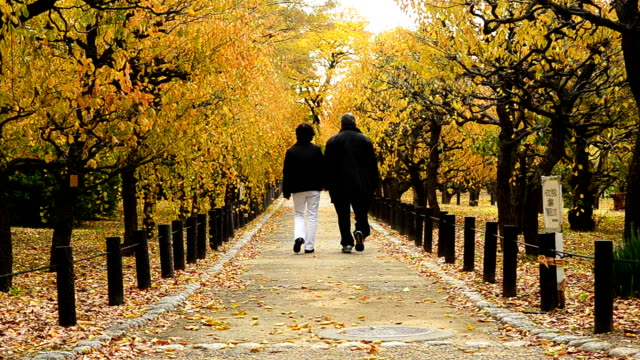 Old Man And Woman Walking Through The Beautiful Park